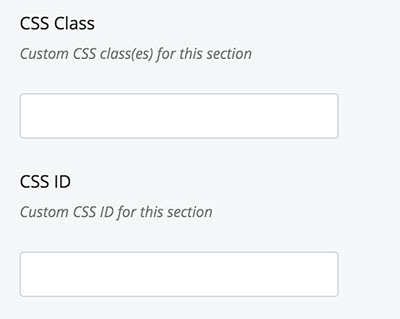 Screenshot of the CSS Class and CSS ID fields.