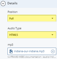 position and audio type fields