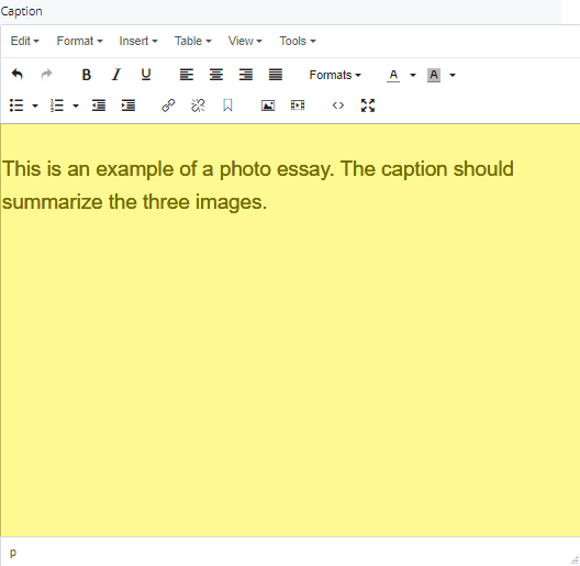 essay caption field